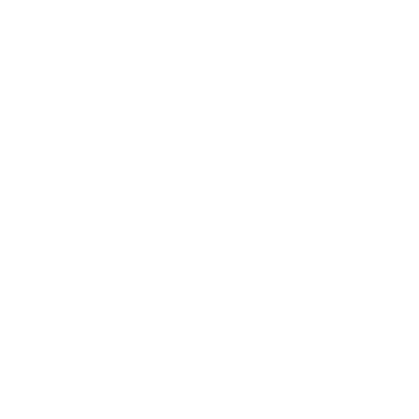 dlconsulting