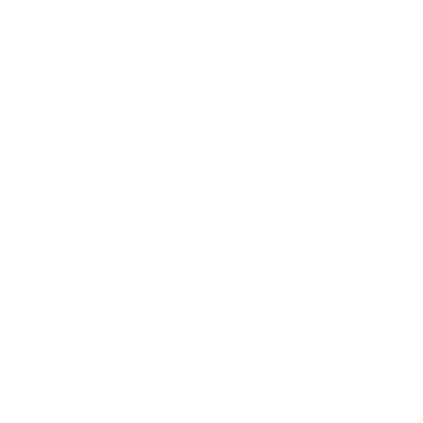 project foce